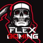 Avatar von Flex.Circor