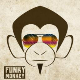 FunkyMonkey562