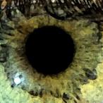 Avatar von Tropos60