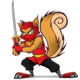 NynjaSquirrel