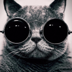 L'avatar di FxM-delpidanio