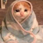 AlfaMIM_'s Avatar