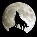 L'avatar di Pi3ro1234