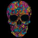Avatar von Skull.Beater