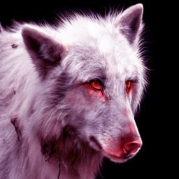 demonwolf1819