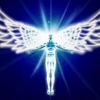 Avatar de RTQC-Lightp0wer