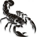 TopazScorpion's Avatar