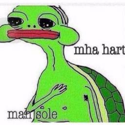 Sad.Turtle