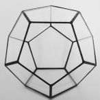 Dodecahedral's Avatar