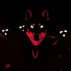 Avatar von GollumdeinVater