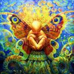 Avatar de flowarius