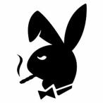 Avatar von BunnyTDR