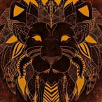 Lionsman69 avatar