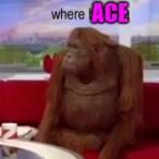 Where_Ace's Avatar