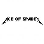Ace-0f-Spades's Avatar