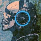Avatar de MetalBlueSeed