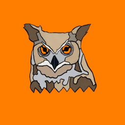 MR.OWL1