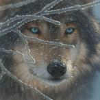 Werwolf_RU's Avatar