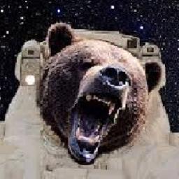 SpaceBear5330