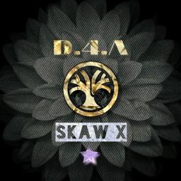 Skaw-X