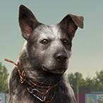 L'avatar di TLOU307