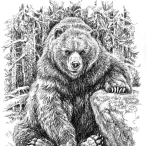 old-bear2210's Avatar