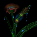Avatar de Echoys