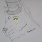 Fiannawolf's Avatar
