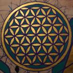 Avatar von rankeinz