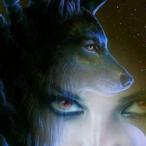 L'avatar di FoxItaliano