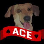 SUCA-Ace4noize's Avatar
