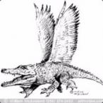 DracoPT's Avatar