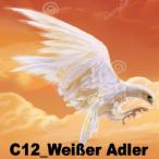 Avatar von C12_Weiseradler