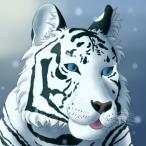 S_Kleer's Avatar