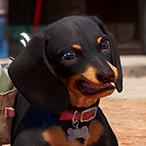 L'avatar di Dluxiia