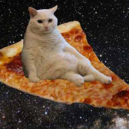 SpaceCatPizza