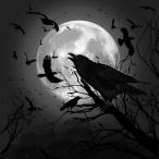 DarkBardRaven's Avatar