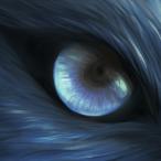 Avatar von MarcoSgu