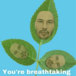 Keanu.Leaves