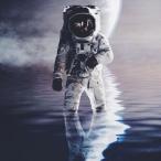 Noct-382 avatar