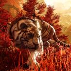 Avatar von IHF_Basti_playz