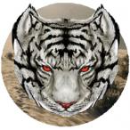 Avatar von Akulinor