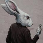 L'avatar di MrBianconiglio