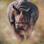 FootlessRhino's Avatar