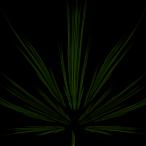 Avatar von neoblack19