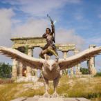 rafiknoll's Avatar