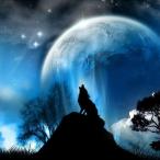 Avatar von DariusSanguna
