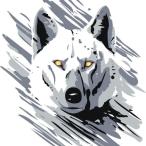 Avatar de wolfsp.SO