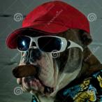 Avatar von Doggie1986