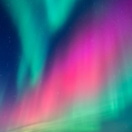 nordic.lights's Avatar